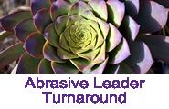 Abrasive Leader Button