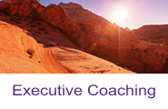 Executive Coaching Button