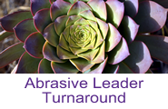 Abrasive Leader Button